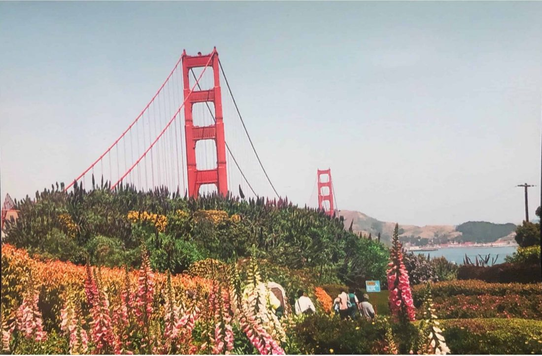golden gate bridge and flowers