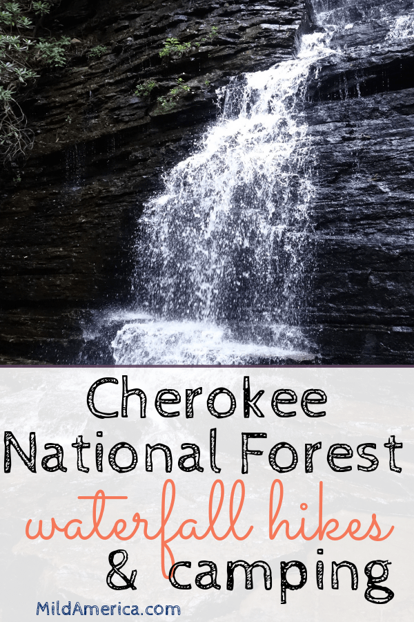 Cherokee National Forest in Tennessee Hiking and camping