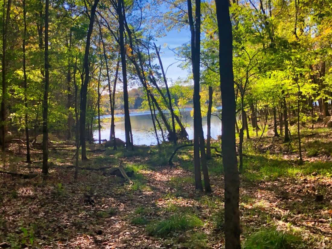 Top Places to Hike in Nashville